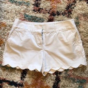 Riviera Shorts by Ann Taylor LOFT